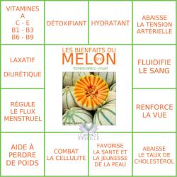 Melon Charentais Bio pièce