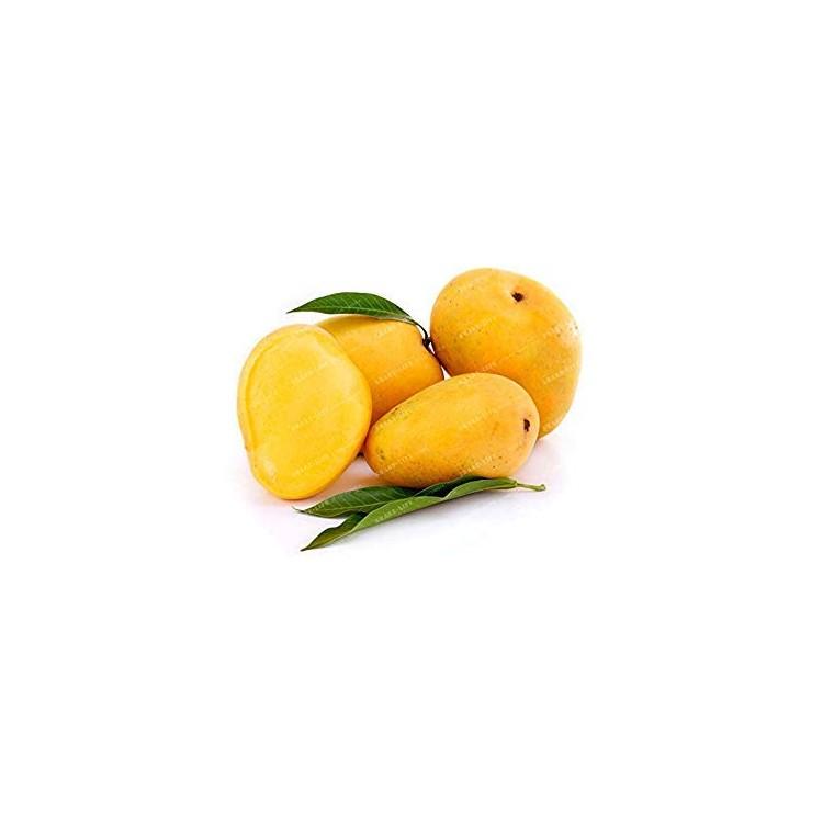 Mangue sauvage de Colombie 250g