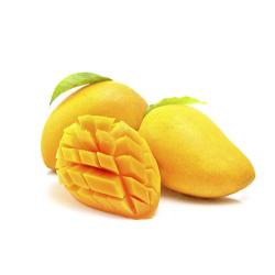 Nonnette fourrée abricot bio