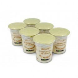 Yaourt du marché vanille Beillevaire