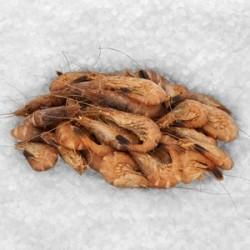 Crevette grise jumbo 100g