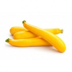 Courgette  longue jaune France 500 g