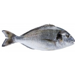 Figue Baglama (250 g)