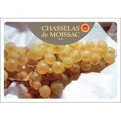 Raisin Chasselas de Moissac A.O.P  (500 g)
