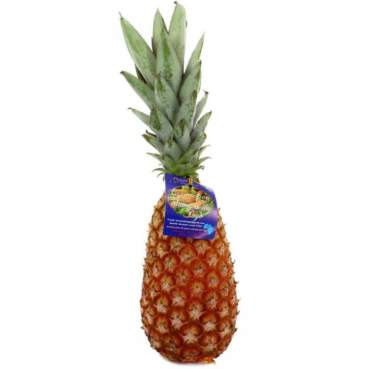Ananas pain de sucre  bouteille pièce